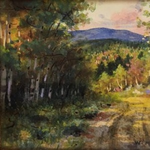 """Country Road near the Seigniory Club, Montebello, P.Q."""