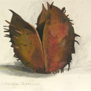 Prickly Thing (Chestnut No.2)